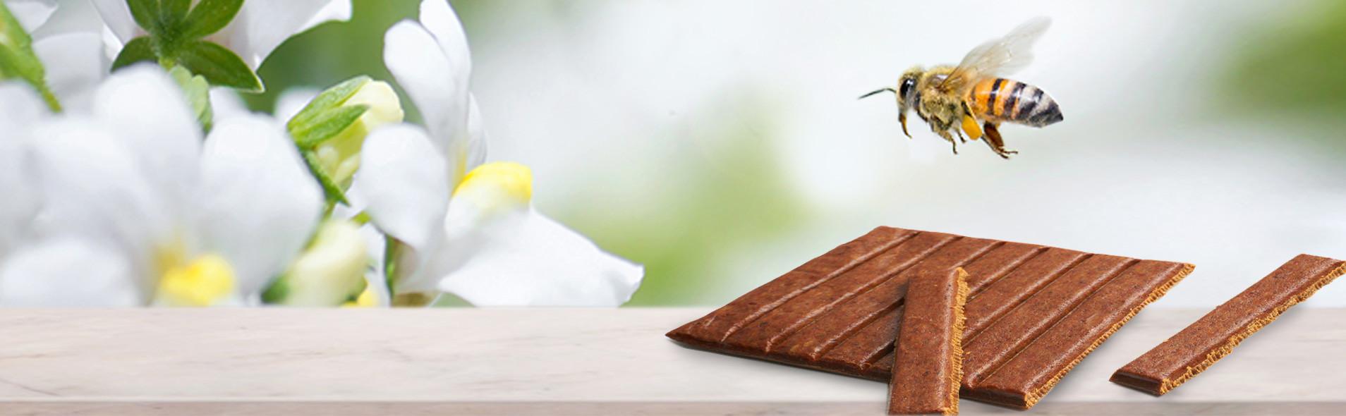 Résine de bourgeon transformée par les abeilles, notre Propolis Bio est reconnue comme antiseptique buccal.